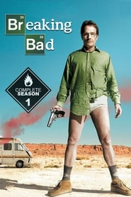 Breaking Bad (Temporada 1) HD 1080P LATINO/INGLES
