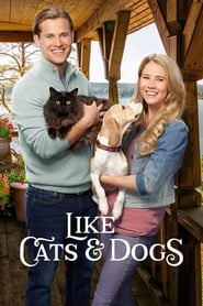 Poster of Like Cats & Dogs