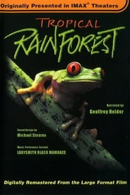 Tropical Rainforest (1992)