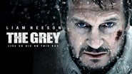 The Grey Images