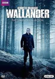 Wallander: The White Lioness (2016)