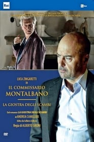 Комисар Монталбано: Въртележката на заблудите