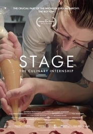 Stage: The Culinary Internship (2019)