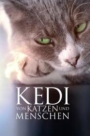 Kedi – Von Katzen und Menschen (2017)