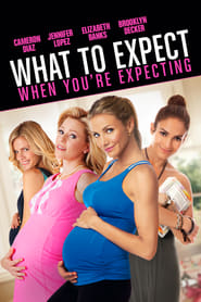 What to Expect When You're Expecting (2016)