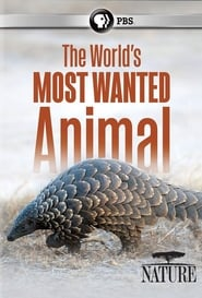 مشاهدة فيلم The World's Most Wanted Animal مترجم