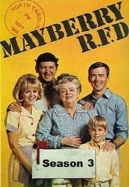 Mayberry R.F.D. streaming vf poster