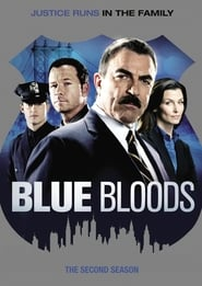 Blue Bloods - Season 2 (2011) poster