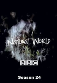Natural World Season 24