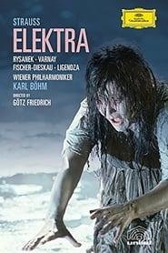 Elektra 1981