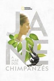 Jane: A Mãe dos Chimpanzés Torrent (2017)