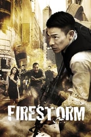 Poster Firestorm 2013