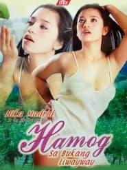 Watch Hamog sa Bukang Liwayway (2004)