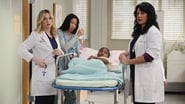 Grey's Anatomy Season 6 Episode 23 : Sanctuary