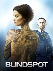 Blindspot saison 5 en streaming