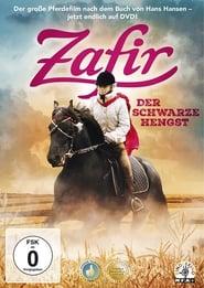 Zafir Der Schwarze Hengst Stream