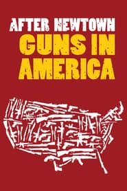 After Newtown: Guns in America 2013