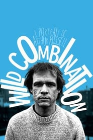 Wild Combination: A Portrait of Arthur Russell 2008