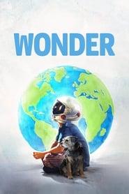 Poster for Wonder