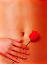 American Beauty 1999 Poster