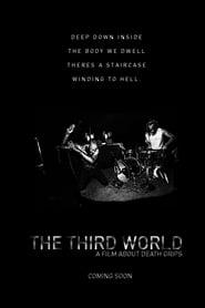 The Third World 2017