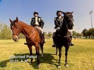 Reno 911! Season 4 Episode 11 : Reno Mounties