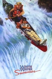 White Water Summer 1987 ポスター