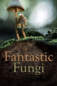 Fantastic Fungi (2019) torrent