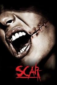 Poster Scar 2007