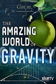 The Amazing World of Gravity 2017