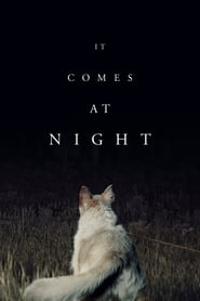 Poster for It Comes at Night