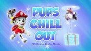 Pups Chill Out