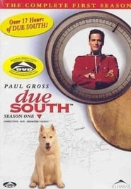 Due South Season 1 Episode 21