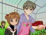 Sakura Card Captor 2x3