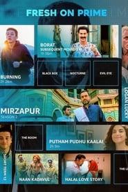 Mirzapur two seasons