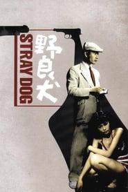 Poster Stray Dog 1949