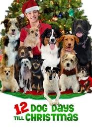 12 Dog Days Till Christmas (Hindi Dubbed)