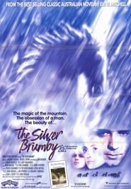 Watch The Silver Stallion 1993 Free Online