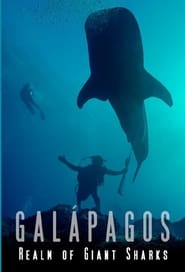 Galapagos Realm Of Giant Sharks