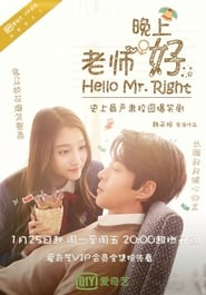 Hello Mr. Right (2016) poster