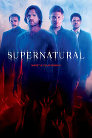 Supernatural - Staffel 15 (2019)