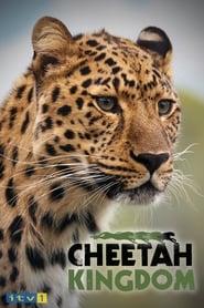 Cheetah Kingdom 2010