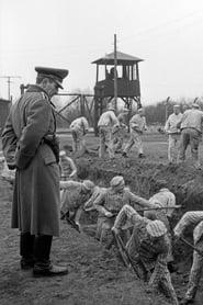Ein Tag - Bericht aus einem deutschen Konzentrationslager 1939