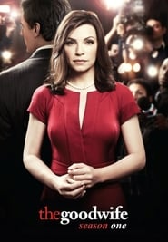 The Good Wife 1×5