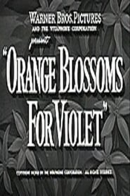 Orange Blossoms for Violet