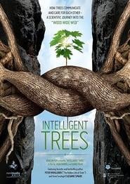 مشاهدة فيلم Intelligent Trees مترجم