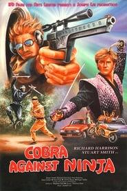 Cobra vs. Ninja 1987