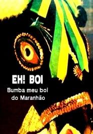 Eh! Boi: O Bumba-Meu-Boi do Maranhão 1989