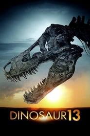 Poster for Dinosaur 13