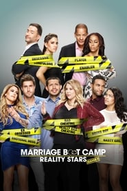 Seriencover von Marriage Boot Camp: Reality Stars